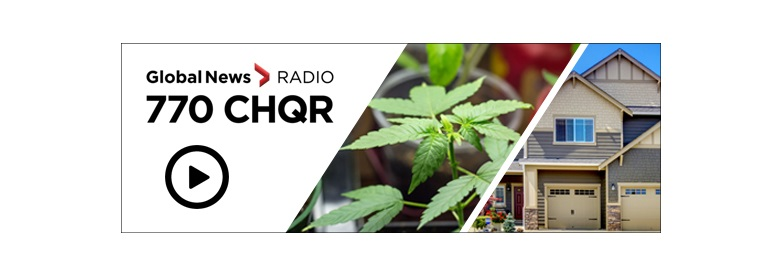 Radio interview cannabis